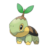 Avatar_profile_387_turtwig