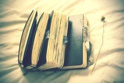 Journal_pane_9638631400147465