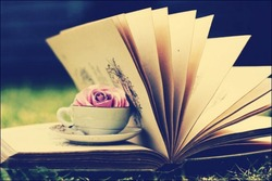Journal_pane_9643551386867432
